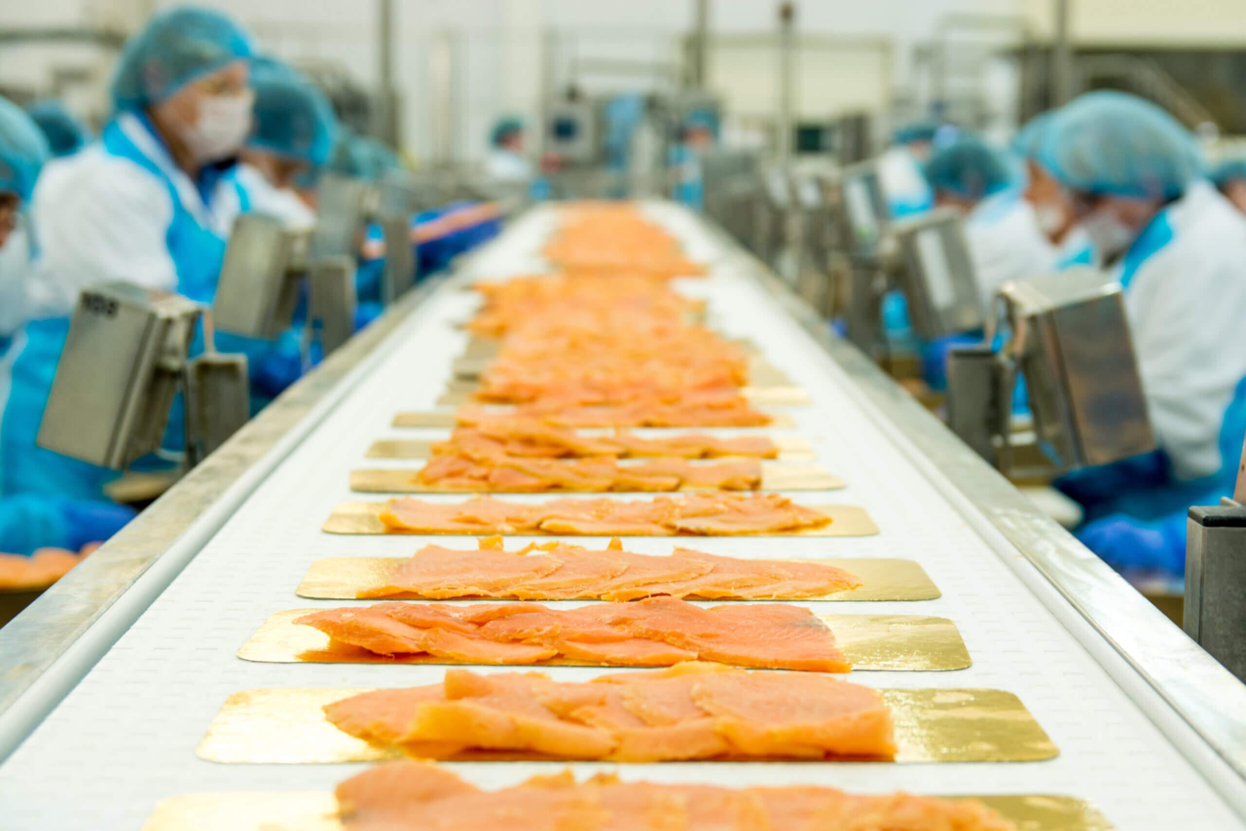 Pracownik produkcji w przetwórstwie rybnym